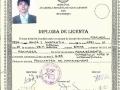 Licenta_1