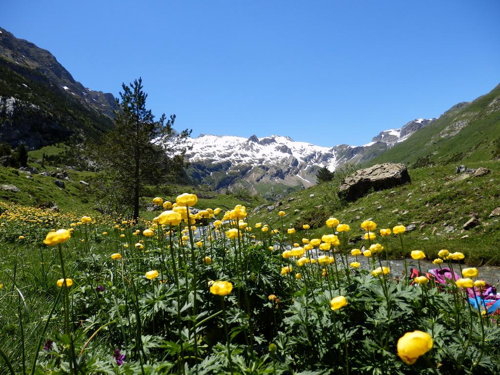 Otal Valley - Jun 2013