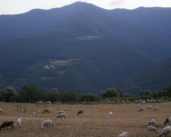 Montseny - 2011