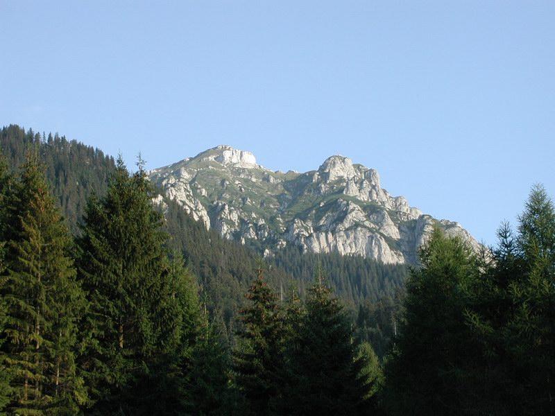 Piatra Craiului - 2001