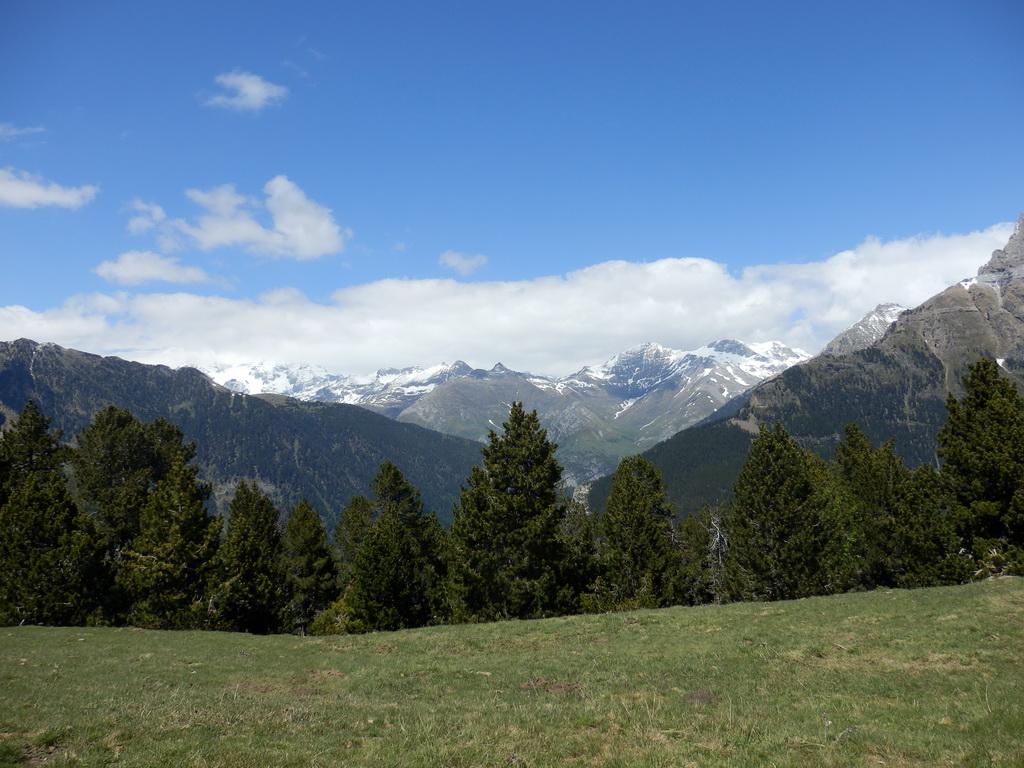 Collado de la Plana 1.995m - Jun 2014